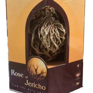 holy land gifts real rose of jericho. Black Bedroom Furniture Sets. Home Design Ideas